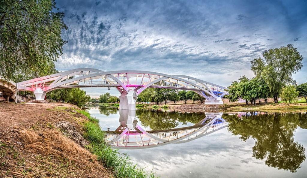 Puente Zoológico